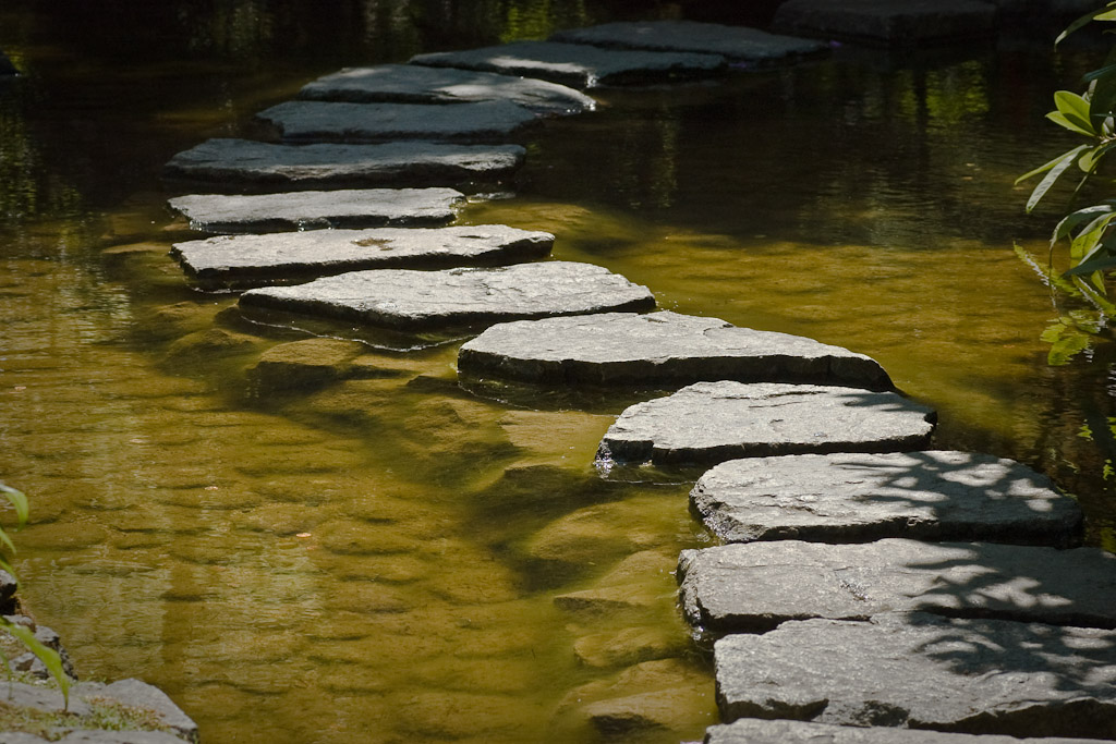 stepping stone image